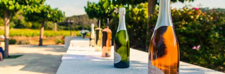 bulles d'anges Château Sainte Croix vignoble var