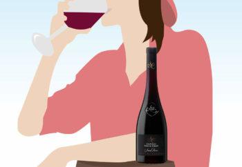 conseils pour bien choisir son vin Château Sainte Croix vignoble var