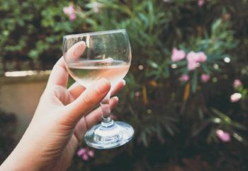 examen olfactif pour apprendre à déguster un vin