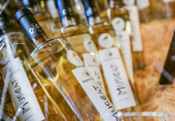 bouteilles muscat du var du Château Sainte Croix domaine en provence